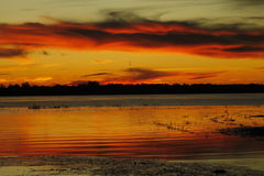 Amasings rode rivier stock afbeelding