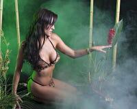 Amasonprinsessa Royaltyfria Bilder