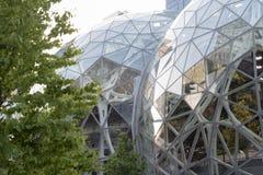 Amasonvärlden förlägger högkvarter sfärer med gröna träd arkivbilder