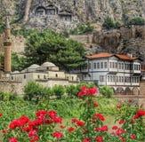 Amasya. And Rose Beautiful Landscapes royalty free stock photo