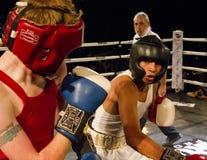 Amatörmässig boxning Arkivbild