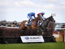 Amatörmässig hästkapplöpning som hoppar över staket arkivfoto