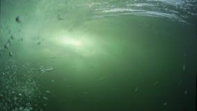 Amatörmässig surfare på vågen arkivfilmer