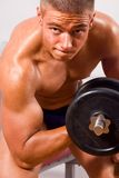 Amateur bodybuilder training Stock Image