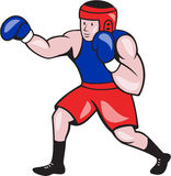 Amateur Boxer Boxing Cartoon Stock Photo