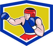 Amateur Boxer Boxing Shield Cartoon Stock Image