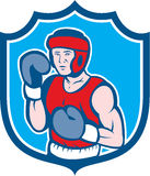 Amateur Boxer Stance Shield Cartoon. Illustration of an amateur boxer wearing head gear and boxing gloves in a stance posing pose viewed from front set inside Stock Photography