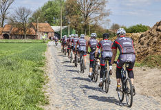 Amateur Cyclists on a Cobblestone Road. Templeuve,France- April 5, 2014:A group of  amateur cyclists riding their bicycles on the cobblestone road near the Royalty Free Stock Photos