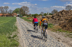Amateur Cyclists on a Cobblestone Road. Templeuve,France- April 5, 2014:Two amateur cyclists riding their bicycles on the cobblestone road near the Moulin du Stock Photography