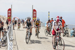 Amateur Cyclists on Mount Ventoux Royalty Free Stock Images