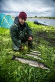 Amateur fisherman with pike fish. Esox lucius royalty free stock images