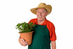 Amateur gardener Stock Photos