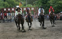 Amateur Horse Race Royalty Free Stock Image