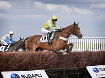 Amateur Horse Racing Jumping over Fences Royalty Free Stock Photography