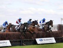 Amateur Horse Racing Jumping over Fences Stock Photos