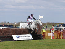 Amateur Horse Racing Jumping over Fences Stock Image