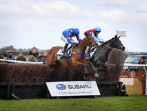 Amateur Horse Racing Jumping over Fences stock photo