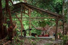 Amateur houten gymnastiek in het midden van de wildernis stock fotografie