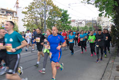 Amateur marathon runners in Belgrade stock photo