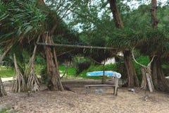 Amateur openluchtgymnastiek bij het strand onder palmen royalty-vrije stock foto's