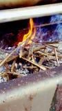 Amateur photographer. Amateur photographed fire royalty free stock photos