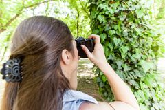 Amateur Photographer Nature. Young woman making picture of plant with vintage camera, female amateur photographer taking photo in nature stock photos