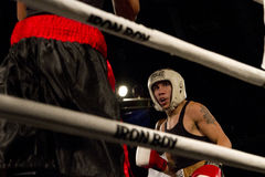 Amateur and Professional Boxing. Amateur male amateur and professional boxers fight in Phoenix, Arizona, USA, at the Celebrity Theatre, November 30, 2012. Pro stock photos