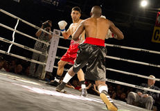 Amateur and Professional Boxing. Amateur male amateur and professional boxers fight in Phoenix, Arizona, USA, at the Celebrity Theatre, November 30, 2012. Pro royalty free stock photos