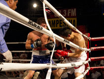 Amateur and Professional Boxing Royalty Free Stock Images