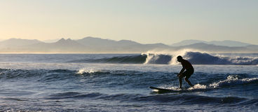 Amateur surfer Stock Images