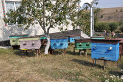 Amateurbienenhaus nahe dem house_2 lizenzfreies stockfoto