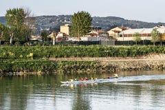 Amator drużyna wioślarstwo na Arno rzece obraz stock