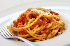 Amatriciana, italian pasta cuisine Royalty Free Stock Photo