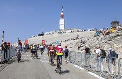 Amatörmässiga cyklister på Mont Ventoux Arkivfoton