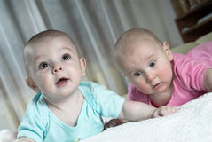 Amazed babies Stock Image
