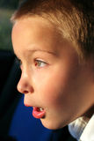 Amazed boy Stock Photos