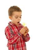 Amazed Boy Holding Light Bulb Stock Photography