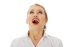 Amazed happy business woman Royalty Free Stock Image