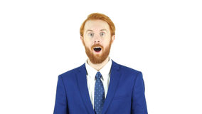 Amazed by Surprise Red Hair Beard Businessman, White Background Royalty Free Stock Photo
