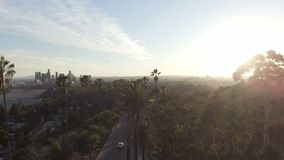 Amazing aerial drone clip of Los Angeles and sunlight behind park trees stock footage