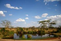 Amazing Africa savanna view Royalty Free Stock Photo