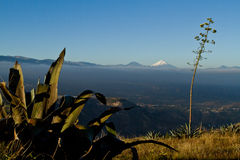 Amazing andean landscape with Cotopaxi on the Stock Photo