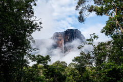 Amazing Angel Falls, Venezuela. Home to the largest water drop in the world, Venezuela boasts natural wonders for those who enjoying venturing into the unknown Royalty Free Stock Photos