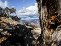 Amazing artistic view from Grand Canyon Royalty Free Stock Photography