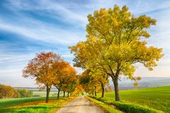 Amazing autumn landscape of country road with colorful trees and blue sky with green grass in South Moravia region, Czech Republic Stock Image