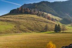 Amazing autumn landscape under Mount Rigi, Alps Stock Photo