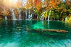 Amazing autumn landscape with waterfalls in Plitvice National Park, Croatia. Fantastic colorful autumn landscape with stunning lake and waterfalls in Plitvice royalty free stock photo