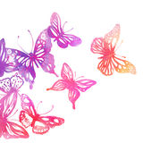 Amazing background with butterflies and flowers Royalty Free Stock Photo