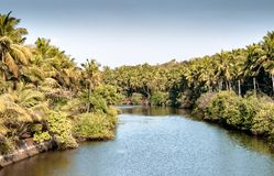 Beautiful Scenic view of backwaters of Kerala, from bridge above. royalty free stock photography