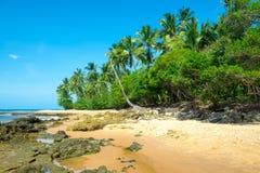 Amazing barra grande beach in Peninsula do Marau. Amazing barra grande beach located at the Ponta do Muta Brazil royalty free stock images